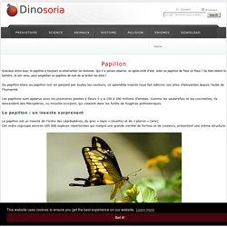 Le Papillon.. De la Chenille au Papillon. En Images. Dinosoria