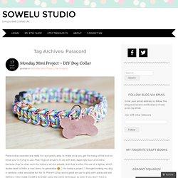 Sowelu Studio