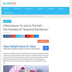 "5 Best places To Visit In The Fall - The Paradise of ""Seasonal Deciduous"" - World Wide Tourism - Global Travel News"