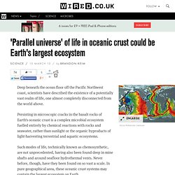 'Parallel universe' of life in oceanic crust could be Earth's largest ecosystem