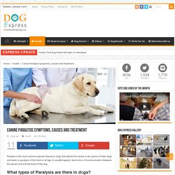 Canine Paralysis Symptoms, Causes And Treatment