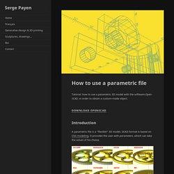 How to use a parametric file – Serge Payen