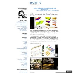 090711-parametric bridge – Thesis Final project- « eSCRIPT-O