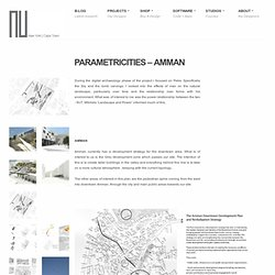 PARAMETRI-CITIES: Amman : CEED Studio