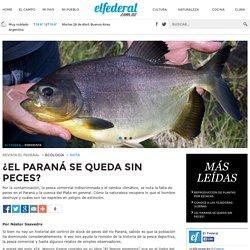 ¿El Paraná se queda sin peces? - Revista El Federal