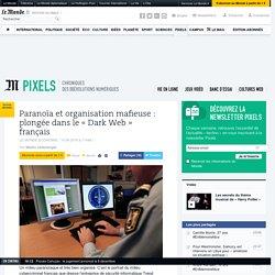 Paranoïa et organisation mafieuse: plongée dans le «Dark Web» français