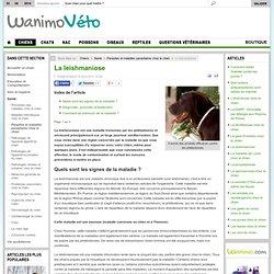 Parasites et maladies parasitaires chez le chien - La leishmaniose par les vétérinaires de Wanimo