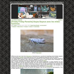 [Freaky Friday Parasite] Soyez Soyeux avec les mites-hermines