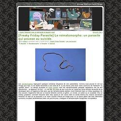 [Freaky Friday Parasite] Le nématomorphe: un parasite qui pousse au suicide.