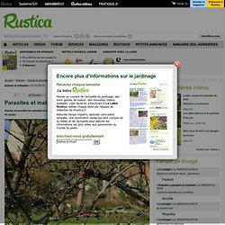 Parasites et maladies des arbres et arbustes