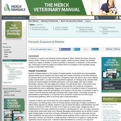 Parasitic Diseases of Rabbits: Rabbits: Merck Veterinary Manual