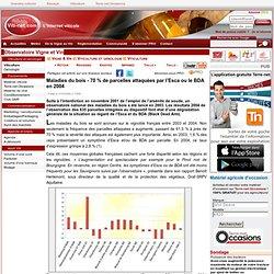 VITI-NET 31/03/05 Maladies du bois - 70 % de parcelles attaquées par l'Esca ou le BDA en 2004