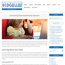 Are Parenting Classes and Workshops Important?