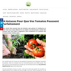 14 Astuces Pour Que Vos Tomates Poussent Parfaitement – Astuces Naturelles