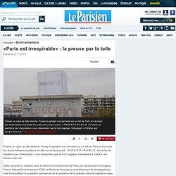 «Paris est irrespirable» : la preuve par la toile - Environnement