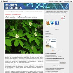 """Paris japonica"" : la fleur au plus grand génome - En quête de sciences - Blog LeMonde.fr"