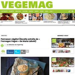 Parmesan végétal (Recette extraite de « Fromages Vegan » de Marie Laforêt)