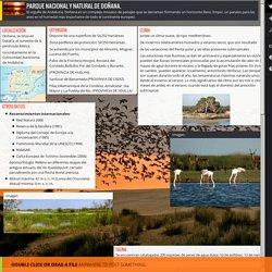 Redruello, Malena - Doñana