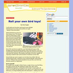 Make your own bird toys - ParrotChronicles.com Feature Story
