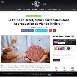 La Chine et Israël, futurs partenaires dans la production de viande in vitro ? - Planetes360