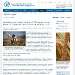 FAO – AVRIL 2016 - La FAO et ses partenaires redoublent d'efforts pour suivre et prévenir la propagation de la rouille du blé aux effets nocifs