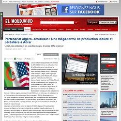 Partenariat algéro- américain : Une méga-ferme de production laitière et céréalière à Adrar