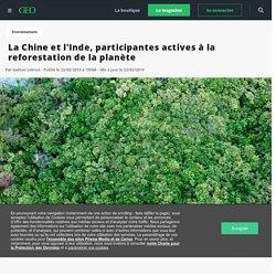 La Chine et l'Inde, participantes actives à la reforestation de la planète - Geo