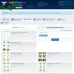 ParticiPassions.org