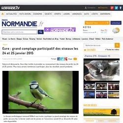 Eure : grand comptage participatif des oiseaux les 24 et 25 janvier 2015