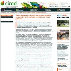 CIRAD 21/09/11 Fièvre aphteuse : la participation des paysans au contrôle de la maladie constitue un atout précieuxCIRAD 21/09/1