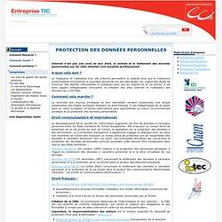Protection des données personnelles / Le site Web / Comprendre / Menu Gauche / Ce site est destiné plus particulièrement aux entreprises qui désirent mener à bien leur projet d'intégration des TIC pour améliorer leur compétitivité