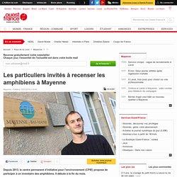 Les particuliers invités à recenser les amphibiens à Mayenne