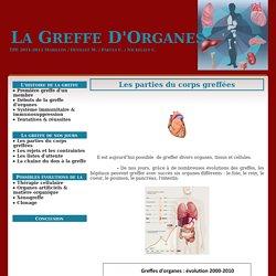 Les parties du corps greffées - La Greffe D'Organes