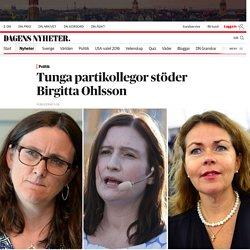 Tunga partikollegor stöder Birgitta Ohlsson