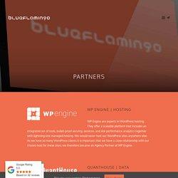 Partners - Blue Flamingo UK