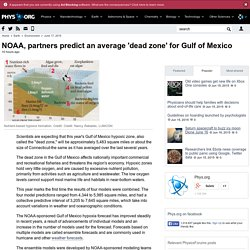 NOAA, partners predict an average 'dead zone' for Gulf of Mexico