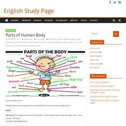 Parts of Human Body – English Study Page
