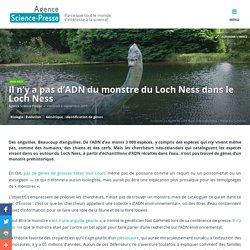 Il n'y a pas d'ADN du monstre du Loch Ness dans le Loch Ness