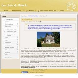 La Passerelle - Les chats du Pèlerin
