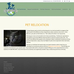 Animal Transportation services