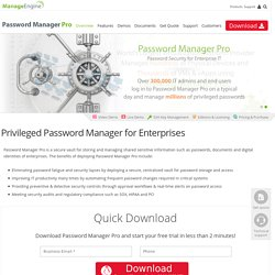 Password Manager for Enterprise Password Management, Secure Password Vault Software