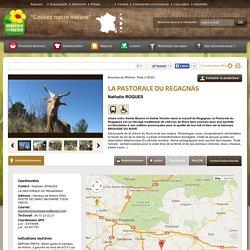 LA PASTORALE DU REGAGNAS - Contact & Plan d'accès - trets, Bouches-du-Rhône (13)
