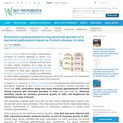 Diarrhoea-causing bacteria may promote growth of a bacterial pathobiont linked to Crohn's disease in mice - Gut Microbiota for Health
