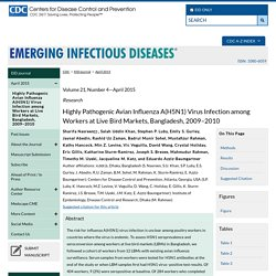 CDC EID - Volume 21, Number 4—April 2015 Highly Pathogenic Avian Influenza A(H5N1) Virus Infection among Workers at Live Bird Markets, Bangladesh, 2009–2010