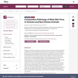 PATHOGENS 07/01/20 Comparative Pathology of West Nile Virus in Humans and Non-Human Animals