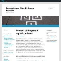 Introduction on Silver Hydrogen Peroxide