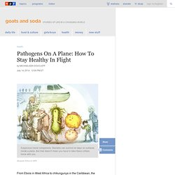 Pathogens On A Plane: How To Stay Healthy In Flight : Goats and Soda