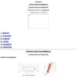 Chap 18 : Pathologie palpébrale Faculté de Médecine Saint-Etienne