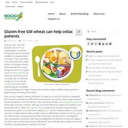 BIOFORTIFIED 28/08/15 Gluten-free GM wheat can help celiac patients
