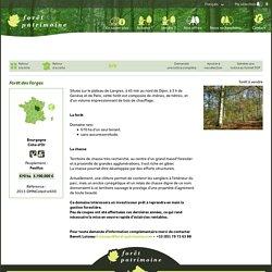 FORET PATRIMOINE Agence spécialisée dans la vente et l'achat de Forêts